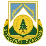 390th Military Police Battalion D-6991